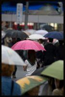 Shibuya Rains